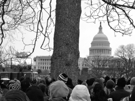 Spectators gather outside the nation's capitol for the President's inauguration. Photo submitted/The Buzz